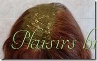 pose du henn sur les racines - Coloration Vgtale Sans Henn