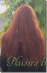 photo aprs la pose du henn 2 - Coloration Vgtale Sans Henn